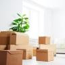 Carton Boxes Singapore