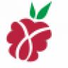 Raspberry eves