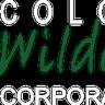 coloradocorporateteambuilding