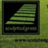 Sculpted Grass