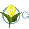 Callidus Electric | Las Vegas Electricians