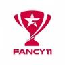 Fancy11