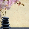 Sage Health and Wellness Clinic
