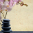 Oriental Massage Atlanta