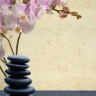 Strongsville Massage Therapy