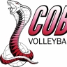 Cobra Sports International, Inc.