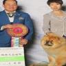 Yan Huang International Kennel