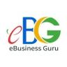 eBusiness Guru