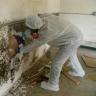 mold removal nj