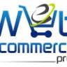 Web Ecommerce Pros