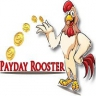 Payday Rooster
